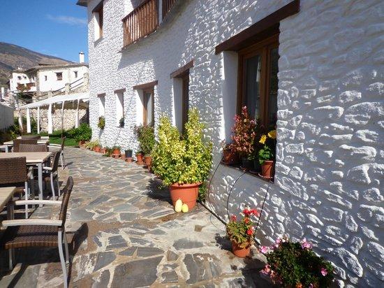 Hotel Estrella de las Nieves: Entrada jardín