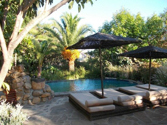 Guesthouse Terra Africa: Poolside Area