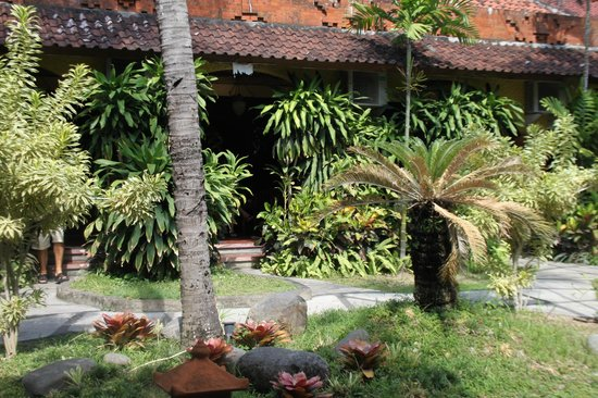 Ramayana Hotel:                                     garden in front of our bungalow
