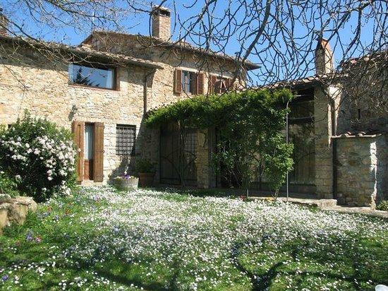 Agriturismo Poggetto: Poggetto in Springtime