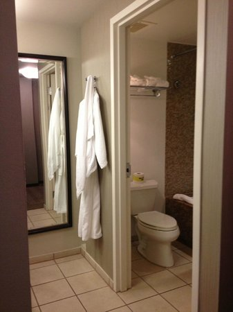 Seminole Hard Rock Hotel Hollywood:                                     bathrom