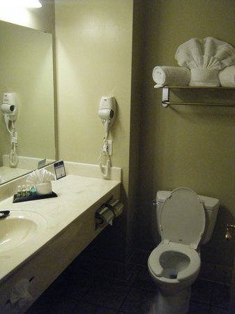 BEST WESTERN PLUS Sunset Suites-Riverwalk: Bathroom 203