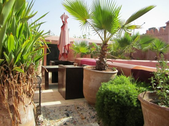 Riad Ta'achchaqa:                   Roof Terrace