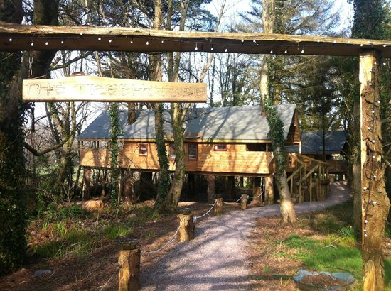 Grove House and Courtyard Cottages:                   The Treehouse