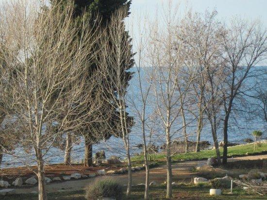 Villa Rosetta Hotel: Vista dalla camera