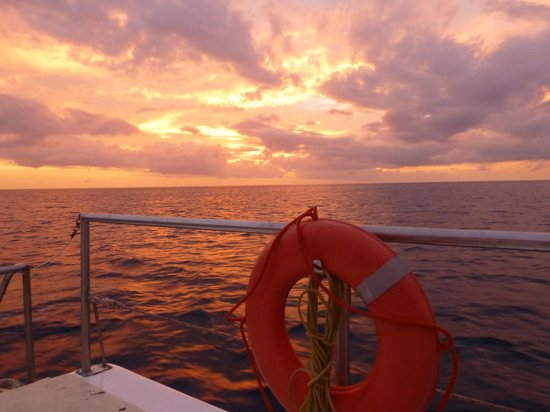 Carnival Sailing Party Cruises:                                     Sunset