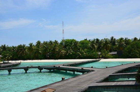 Paradise Island Resort & Spa:                   Wasservillen