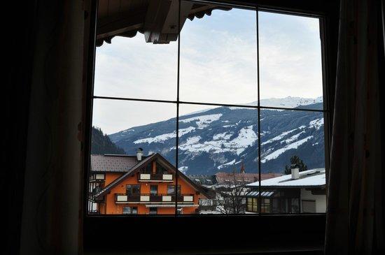 Zorn-Pauli:                   View from bedroom
