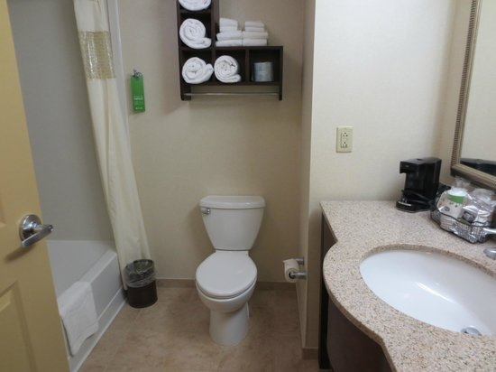 Hampton Inn by Hilton Presque Isle: Clean bathroom