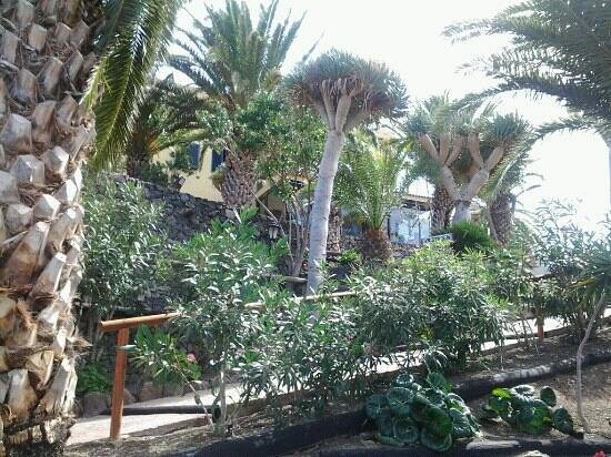 Hacienda de Anzo:                   hacienda anzo
