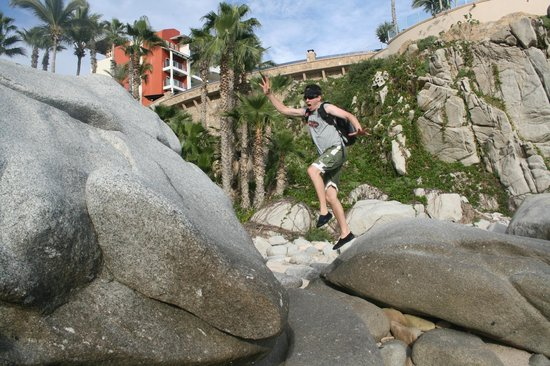Welk Resorts Sirena Del Mar:                   Exploring the rocks beneath