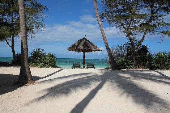Anna of Zanzibar:                   Strand