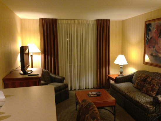 Hawthorn Suites by Wyndham Dallas Park Central:                                     Living room