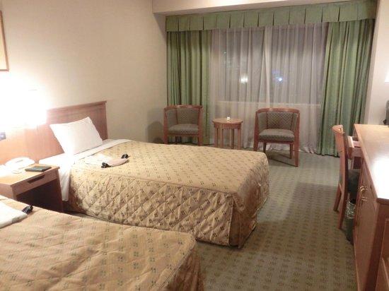 Dai-ichi Hotel Ryogoku:                   部屋