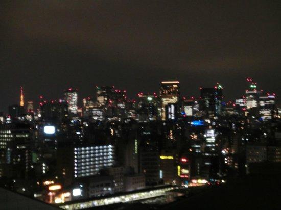 Dai-ichi Hotel Ryogoku:                   眺め