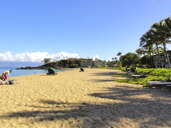 Kaanapali Beach Hotel:                   la spiaggia
