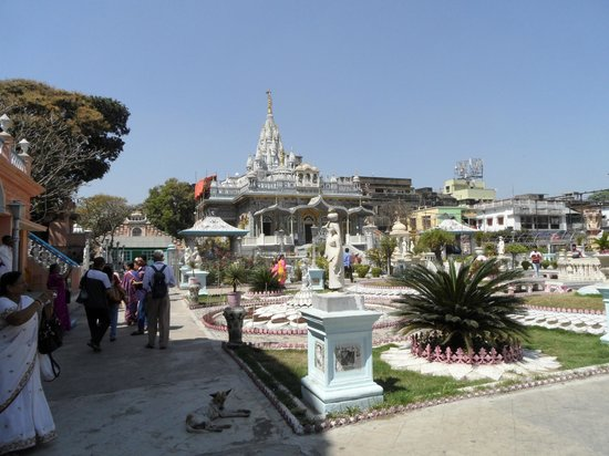 Walks of India Day Tours:                   jain