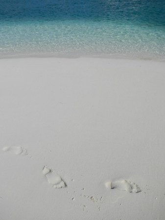 Coral Gardens:                   your footprints could be here!
