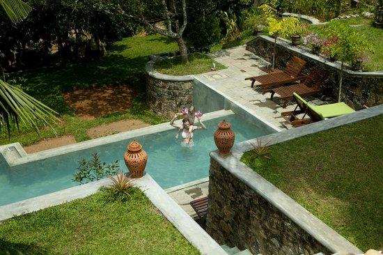 The Spice House, Mirissa:                   The garden pool