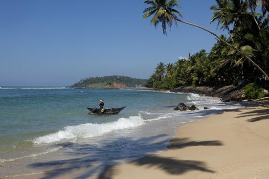 The Spice House, Mirissa:                   The uncrowded beach right opposite the road from the guesthouse