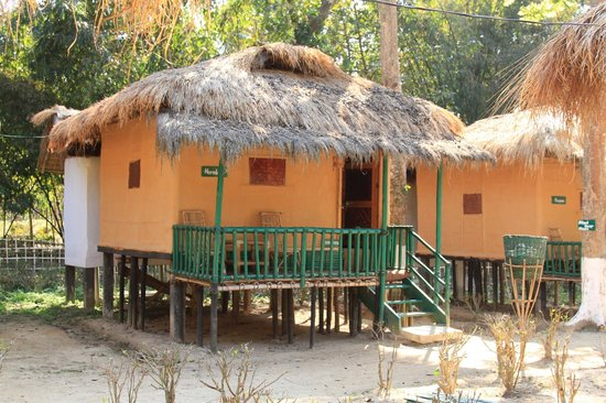 Nature Hunt Eco Camp, Kaziranga:                   Cottages (where we stayed)