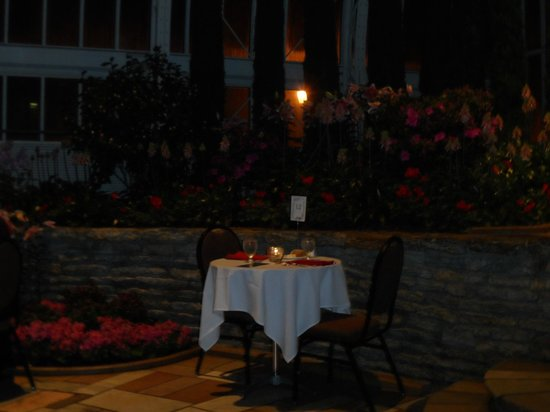 Como Park Zoo & Conservatory: Candlelight Dinner Valentine's Day