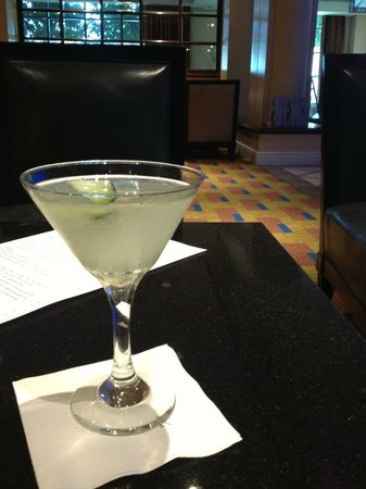 Renaissance Los Angeles Airport Hotel:                   cucumber martini! cheers!
