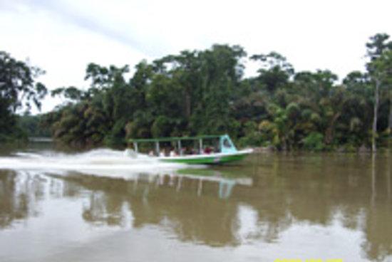 Costa Rica Fun Adventures:                   canales de tortuguero costa rica