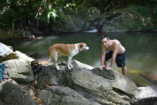 Gloucester Place:                   Parlatuvier falls / swimming with Wonderdog