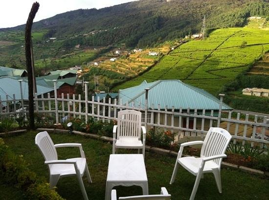 Misty Hills Boutique Cottage B&B:                   yard with chairs