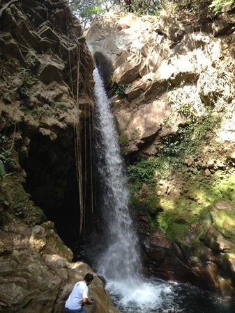 """Costa Rica For Everyone: Mario checking out the waterfall. His advice """"jump with feet first"""".  Best tour in Costa Rica. C"""