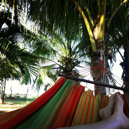 ماربلو فيلا سويتس:                   Relaxing in the hammock.                 