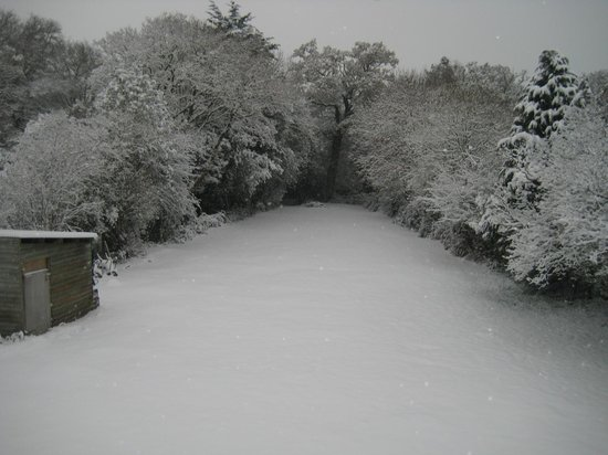 Meerut: Back garden in snow