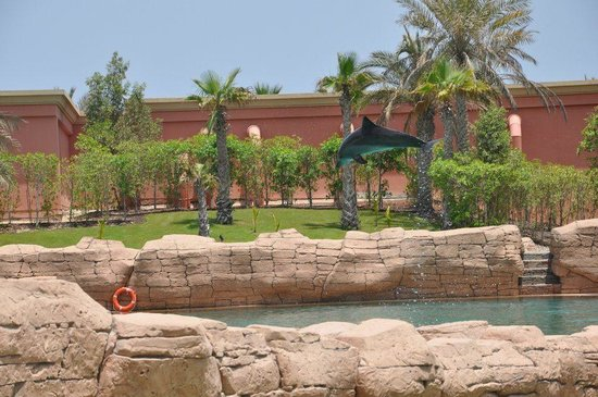 Atlantis, The Palm:                   Dolphins