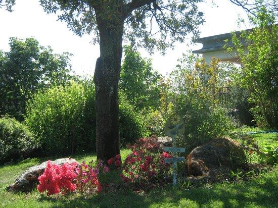 La Villa di Lucia : giardino