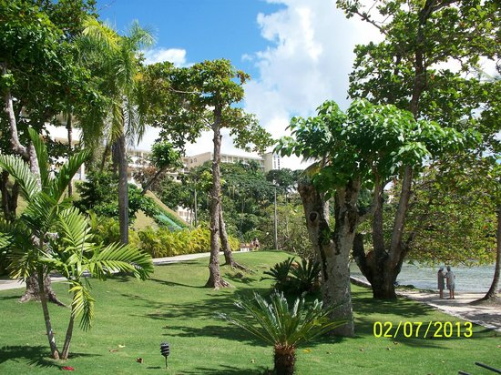 Grand Bahia Principe Cayacoa:                   Beautiful lush landscaping