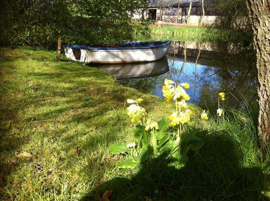 Great Ashley Farm B&B : The pond at Great Ashley Farm