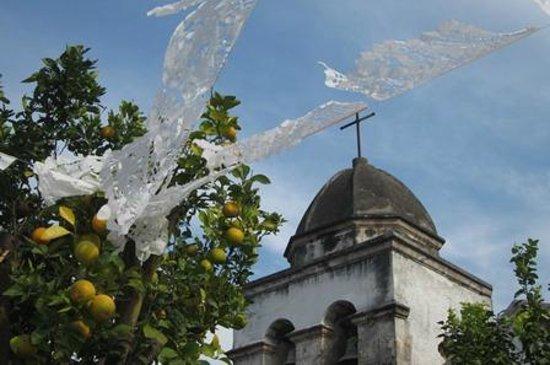 Hostal Casa Blanca: Alejandro Rangel Hidalgo Museum