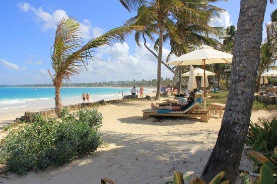 VIK hotel ARENA BLANCA:                   Strand beim VIK Cayena
