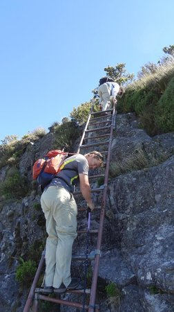 Cape Town Hiking with Tim Lundy -  Tours:                   three ladders...easier way to traverse a steep incline