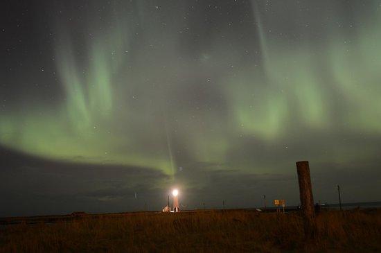 Iceland Aurora Photo Tours - Day Tours:                   northern lights