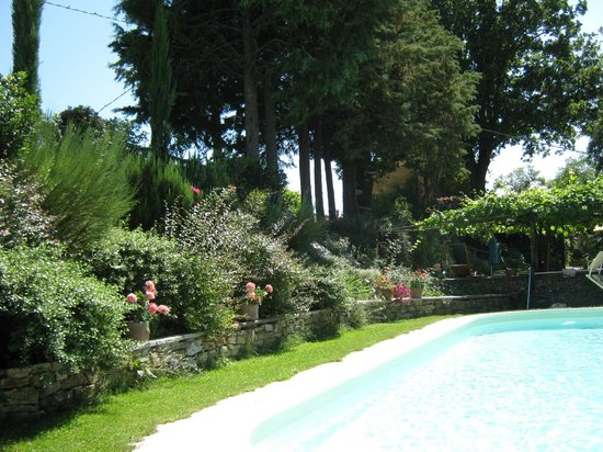 B&B Le Due Volpi: Pool in summer