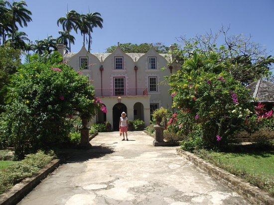 Butterfly Beach Hotel: St Nicholas Abbey
