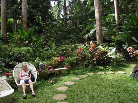 Butterfly Beach Hotel: Hunte's garden