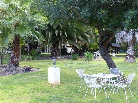 Vreugde Guest Farm:                   Teil des Gartens