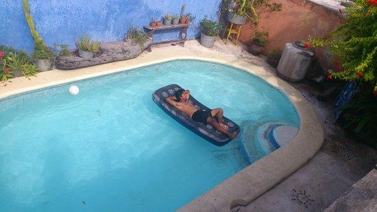 Lolo Lorena:                                     Disfrutando de un dia soleado y silencioso!