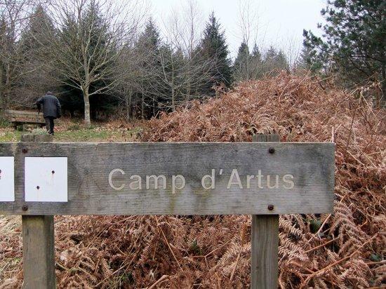 Foret de Huelgoat : we climbed still higher to reach Arthur's camp