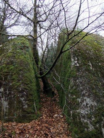 Foret de Huelgoat : those giants dropped boulders everywhere