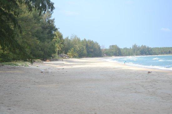 Laem Kum Beach Resort & Seafood:                   Stranden