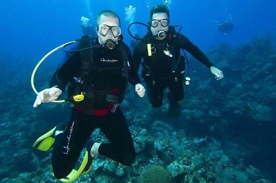 Kittiwake wreck dive picture of deep blue divers grand - Dive deep blue ...